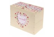 DITSY - Heart 36 Photo Album Storage Box - Cream / Pink