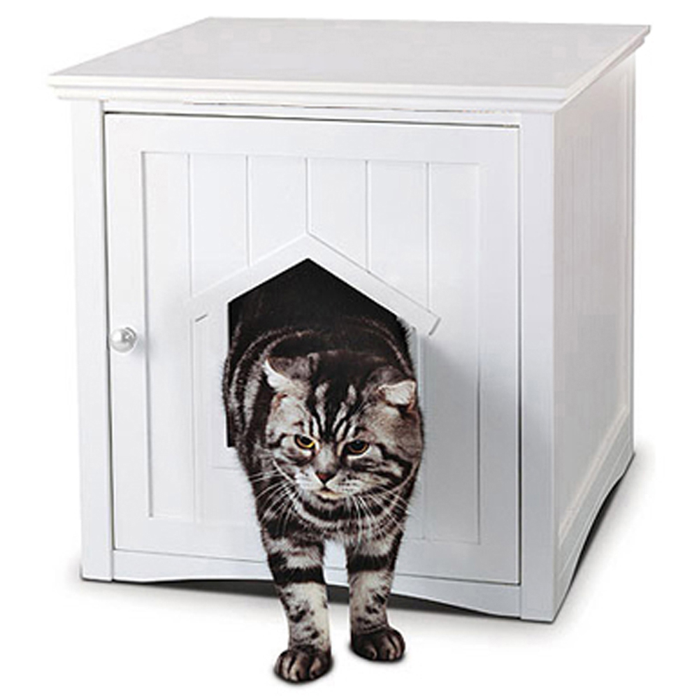 Is Lightweight Cat Litter Worth It